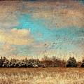 Snowy Pasture by Deon Grandon