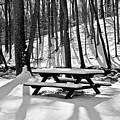 Snowy Picnic Table In Black And White by Robin Lynne Schwind