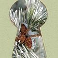 Snowy Pine Keyhole by Steve Edwards