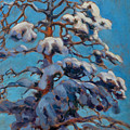 Snowy Pine-tree by Akseli Gallen-Kallela