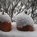 Snowy Pumpkins by Carol McCutcheon