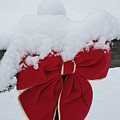 Snowy Red Bow by Pamela Smith