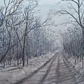 Snowy Road At Dawn  by J O Huppler