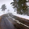 Snowy Road by Carlos Caetano