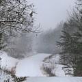 Snowy Road by Kathryn Meyer