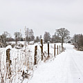 Snowy Rural Landscape by Sophie McAulay
