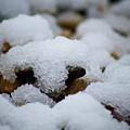 Snowy Stones by Lisa Knechtel