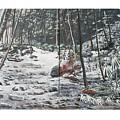 Snowy Stream2 by Ellie Swofford
