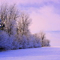 Snowy Sunday by Julie Lueders