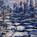 Snowy Trail by Barbara O'Toole