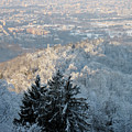 Snowy Turin by Stefania Levi