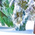 Snowy Winter by Jeelan Clark