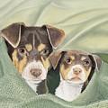 Snuggle Buddies by Barbara Keel