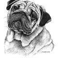 Snuggly Puggly by Louise Howarth