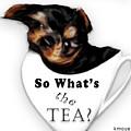 So What's The Tea? by Kanisha Moye