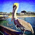 Soak Up The Sun Quote, Cute California Beach Pier Pelican by Marcia Luce at Luceworks