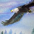 Soaring Eagle by Katherine  Berlin