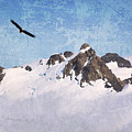 Soaring The Peaks by Guy Crittenden