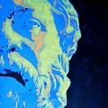 Socrates - Ancient Greek Philosopher by Ana Maria Edulescu