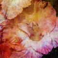 Soft As A Peach 3032 Idp_2 by Steven Ward