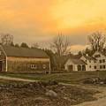 Soft Evening Light by Elizabeth Tillar