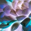 Soft Glow Succulents by Heather Joyce Morrill
