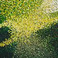Soft Green Light  by Dean Triolo