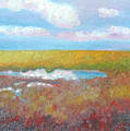 Soft Marsh by Blaine Filthaut