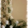 Soft Whites by Kristin Elmquist