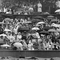 Soggy Supporters by Ron Stone