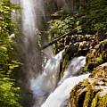 Sol Duc Falls by Adam Romanowicz