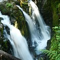Sol Duc Falls by Idaho Scenic Images Linda Lantzy
