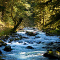Sol Duc River Above The Falls - Washington by Marie Jamieson