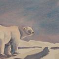 Solitary Polar Bear by Debbie Homewood