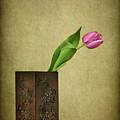 Solitude In Bloom by Evelina Kremsdorf
