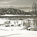 Solitude In Boulder County by Marilyn Hunt