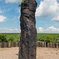 Solstice Celebrations - Menhir Stone Shepherd by Michal Boubin