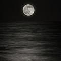 Solstice Moon by Rick Bravo