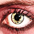 Something In The Eye by Qb Whitener