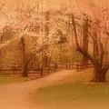 Sometimes - Holmdel Park by Angie Tirado