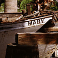 Someting About Mary by David  Starnes