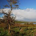 Somewhere In Ireland by Juraj Simek