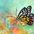 Song Of Joy - Butterfly by Robin Monroe