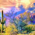 Sonoran Desert Sunset by Dominic Piperata