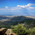 Sonoran Hillside Lookout by Eric M Bass