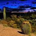 Sonoran Twilight by Mark Myhaver