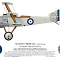 Sopwith Triplane Prototype - Side Profile View by Ed Jackson