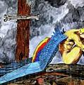 Sorrow's Angelic One by Doug Hiser