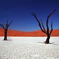 Sossusvlei In Namib Desert, Namibia by Igor Bilic Photography