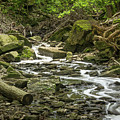 Sounds Of A Mountain Stream by Robert Alsop
